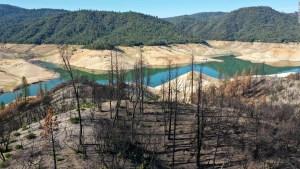 Estudio: Los incendios forestales en EE.UU. podrían agravarse