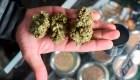 AMLO, dispuesto a revertir legalización de la marihuana