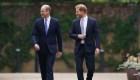 William y Harry, juntos en honor a Diana