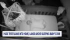 Video muestra como un árbol cae sobre cuna de un bebé