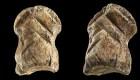 """Pequeño hueso podría ser una """"obra de arte"""" neandertal"""