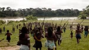 ¿Cómo controlar la minería ilegal en la Amazonía?