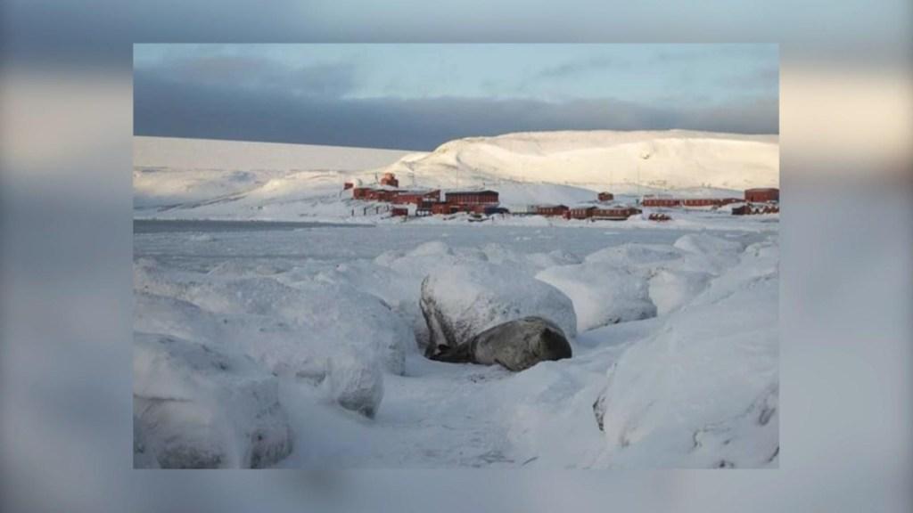 Mira la superficie congelada del mar de la Base Carlini