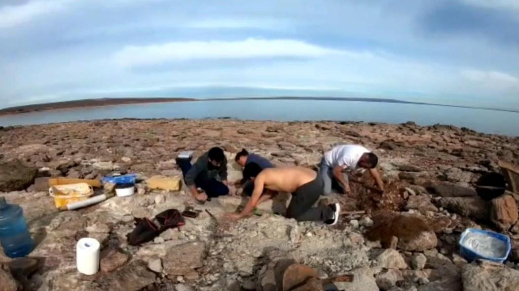 Restos de un dinosaurio gigante hallados en Neuquén