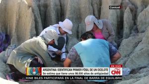 Hallan un fósil de 98.000 años en Argentina