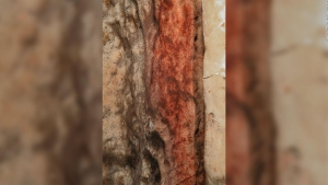 Neandertales, creadores de las primeras formas de arte