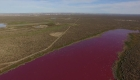 Increíble: una laguna se tiñe de rosa en Argentina