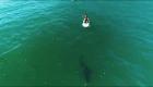 Orlando Bloom y su encuentro con un tiburón