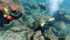 Buzos encuentran monedas romanas en la costa de España