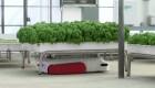 Robots ahorran agua para cultivos