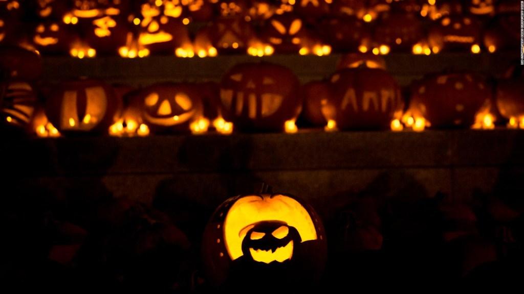 Reportan escasez de calabazas de Halloween en California