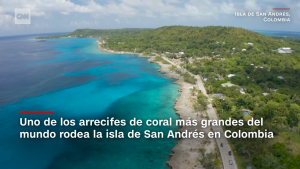 Este tipo de turismo salva arrecifes de coral en Colombia